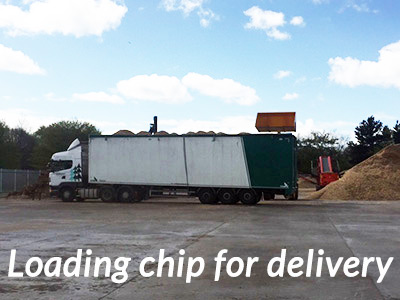 Loading-chip-for-delivery-